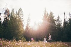 sunflare, meadow, forest, pose... wildflowers photography