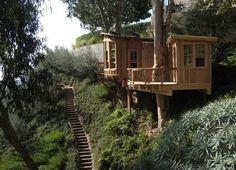 tree house - a dramatic setting is a bonus!