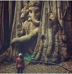 Bhagvat Kripa – The Mommypedia. Shiva Hindu, Shiva Art, Ganesha Art, Shiva Shakti, Hindu Deities, Ganesh Images, Ganesha Pictures, Lord Krishna Images, Jai Ganesh