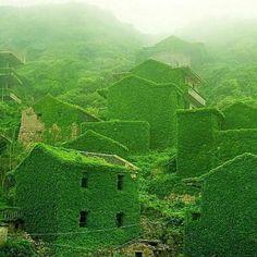 Dans la baie de Hangzhou en Chine, un ancien village de pêcheurs. Crédit Michael Sovran / Flickr.