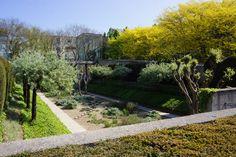 Parc André Citroën, Paris, France, April 2015, Agata Byrne garden travels