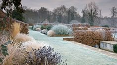 Marks Hall frost image