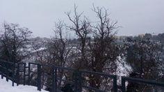 Molise: #Emergenza #Neve a #Larino diverse contrade isolate (link: http://ift.tt/2j5nHWe )