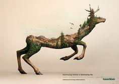 Quand la forêt brûle, son écosystème disparaît.  En images : la campagne choc d'une ONG contre la destruction de l'environnement