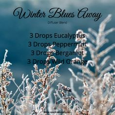 Diffuse away those winter blues away with this essential oil recipe of Eucalyptus, Peppermint, Berga Essential Oils For Colds, Essential Oil Diffuser Blends, Essential Oil Uses, Young Living Essential Oils, Young Living Oils, Diffuser Recipes, Doterra Oils, Stress, Oil Recipe