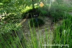 A look from atop the horsetail into the garden. - Inside Out Design