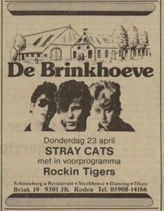 Stray Cats - Roden 1981