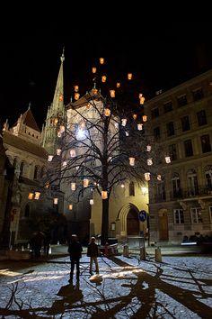 """in Genf gibt es das Spektakel """"Arbres en Lumières"""" - hast Du das schon gesehen?"""