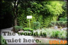 Jardín de la meditación #quiet #calm #UDLAP # jardines #campus