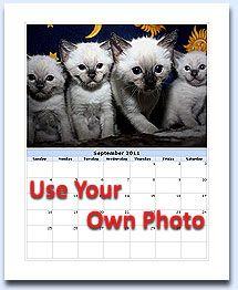 Photo Calendar   Photo Calendar And Calendar