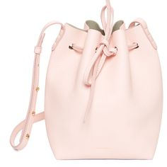 Rosa tumbled leather mini.  Will definitely try for when Mansur Gavriel restocks in May!