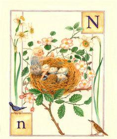 N...Nest... by Lauren Mills Elfabet