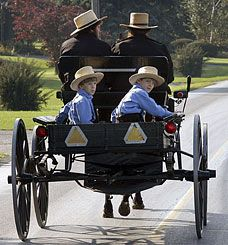 Amish in Illinois | group of Amish children ride in a buggy near the one room Amish ...
