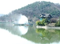 and Daegu, South Korea South Korea Travel, Asia Travel, Seoul, Places To Travel, Places To See, Daegu South Korea, Travel Info, Trip Planning, Beautiful Places
