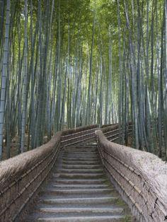Stairway Through Bamboo Grove Above Adashino Nemutsu-Ji Temple by Brent Winebrenner. Print from Art.com.