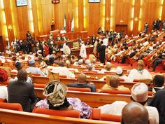 Xenophobic Attacks: House Forces Senate to Cancel Trip to South Africa