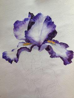 Resultado de imagen para how to paint iris flowers in acrylic Iris Painting, Acrylic Painting Flowers, Acrylic Painting Tutorials, Acrylic Art, Watercolor Flowers, Drawing Flowers, Tattoo Flowers, Pour Painting, Painting Canvas