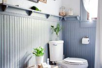 The Best Plants for the Bathroom | Apartment Therapy