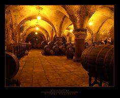 Wine cellar - Kloster Eberbach, Germany