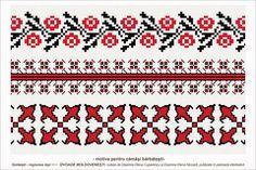 Semne Cusute: romanian traditional motifs - MOLDOVA - Iasi, sat: Golaesti