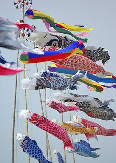 Japanese Carp Streamers, Koinobori 鯉のぼり Boy's Day in Japan Boys Day, Child Day, Japanese Celebrations, Tokyo Ville, Art Basel, Japon Tokyo, All About Japan, Carpe Koi, Go Fly A Kite