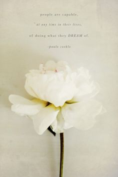 People are capable at any time in their lives, of doing what they dream of - Paulo Coehlo ~ beautifully, suddenly