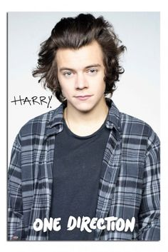 One Direction Harry Styles 2015 Official Poster<<<no words can describe what i see before me lol. love ya bestie