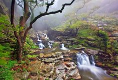 'Dimosari canyon, Evia island' by Hercules Milas Smell Of Rain, Wine Tourism, Travel Goals, Greek Islands, Athens, Travel Photos, Greece, Things To Do, Pictures