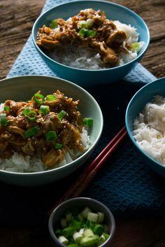 Pulled Chicken mit Teriyaki Sauce