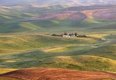 Previous pinner said Idaho, so I will add I think it's the Palouse, which is gorgeous and near where I grew up.