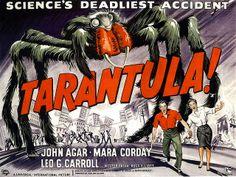 1955-...-arachnid-with-attitude! by x-ray delta one, via Flickr