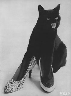 Kitty showing off shoe fashions for Vogue, 1955,