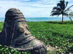 #perfect #day #mermaid #lifeisbetteronthebeach #sky #surf #sand #carribbean #coconut #lovelife #travel #travelgram #traveladdict #lovemyjob #coconuttree #islandlife #island #ocean #sea #guadeloupe #ig_photooftheday #picoftheday #blue #green #sun http://tipsrazzi.com/ipost/1505484715103609136/?code=BTkjl86h-Ew