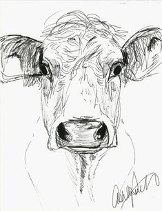392 best bull cow images in 2019 baby cows cow taurus Cow Steer step by step cow drawing face stepbystepfacepainting animal line drawings pencil