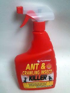 500ml Spray Bottle KILL Ant Coackroaches Fleas Bugs Annoying Insect KILLER B2GOF PETSHIELD