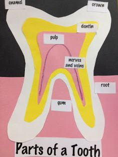 learn about teeth! We might have to do this before the dentist this week.