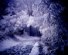 """Ice Fog at Cumberland Gap, Smoky Mountains """"Like"""" us on www.facebook.com/ReaganResorts for interesting images and great deals in Gatlinburg! Call 1-800-933-8674 to book your rooms today!"""