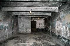 This is a gas chamber in Auschwitz (a Nazi concentration camp) that was used to kill Jews. They suffered the toxic gas and eventually perished. Us History, History Facts, Bergen, Russian Sleep Experiment, Steam Spa, Lest We Forget, Wwii, Horror, Places