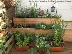 container gardening deck ideas - Google Search