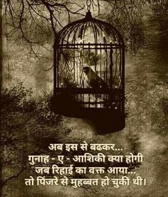 Quotes and Whatsapp Status videos in Hindi, Gujarati, Marathi Osho Quotes Love, Osho Hindi Quotes, Marathi Quotes, Love Quotes In Hindi, Motivational Quotes In Hindi, Gujarati Quotes, Punjabi Quotes, Cute Quotes, Qoutes