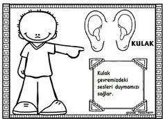 Duyu organları 2 In, Crafts For Kids, Preschool, How To Plan, Education, Black And White, Comics, Handmade, Poster