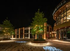 2110 best landscape lighting images in 2019 landscape architecture