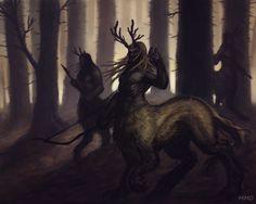 Woodland Centaurs, Marin Olah