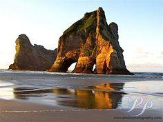 The New Zeland Coast