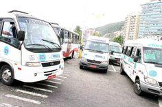 São Vicente (SP) libera transporte de animais e proíbe fogos na cidade
