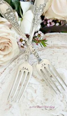 Mr. & Mrs. ~ Debbie Orcutt ❤   Dream Wedding