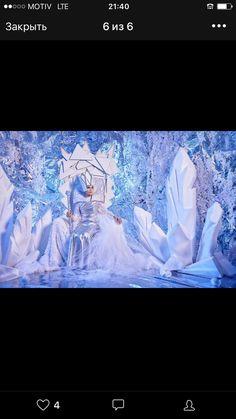 Narnia, Northen Lights, Frozen Theme, Anna Frozen, Blossom Flower, Winter Theme, Visual Merchandising, Winter Wonderland, Birthday Parties