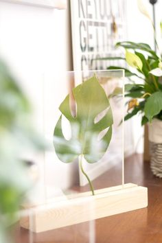 Create this modern, desk top stand and fill with a variety of leaves and flowers for a unique way to display nature at it's best.