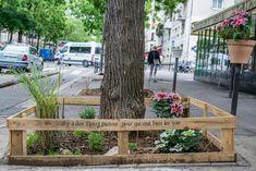 París quiere crear 100 ha de jardines usando muros, fachadas y azoteas por toda la ciudad en 2020, un tercio de ese espacio dedicado a los huertos urbanos.
