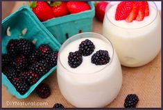 How To Make Yogurt 1